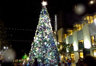 Snow in Santa Monica! Holiday Tree Events Use Snow to Create Happiness